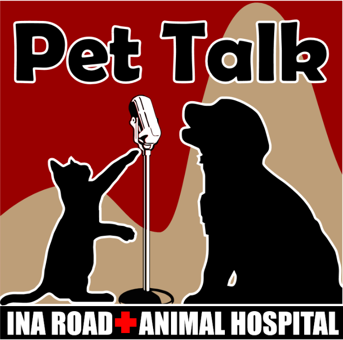 Pet Talk Radio