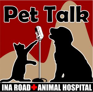 Event - Pet Talk Radio Show, Saturdays 8am on 104.1FM